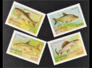 Weißrussland Belarus 1997 Michel Nr. 217-20 Fische Bachforelle Flussbarbe