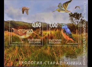 Bulgarien 2009, Block 308, Vögel im Balkangebirge, Waldschnepfe, Steinröte