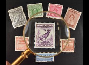 Neufundland Kanada 1932 Nr. 185-92 Freimarken verschiedene Darstellungen