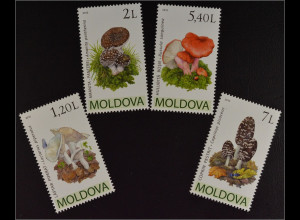 Moldawien Moldova 2010 Michel Nr. 694-97 Pilze Pantherpilz Bluttäubling