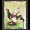 Lettland Latvia 2016 Nr. 975 Auerwild Auerhahn Auerhenne Fauna Vögel Waldtiere