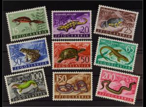 Jugoslawien 1962 MiNr. 1007-15 Fauna Amphibien Reptilien Feuersalamander