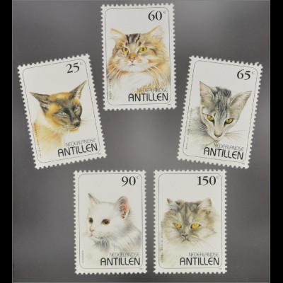 Katzen Briefmarken Siamkatze Maine Coon Katze Angorakatze Blauer Rauch Perser