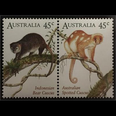 Australien Kuskuse Tüpfelkuskus Indonesischer Bärenkuskus Parallelausgabe
