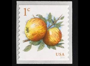 USA Amerika 2016 Michel Nr. 5324 Freimarke Obst Apfelsorte Newtown Pippin