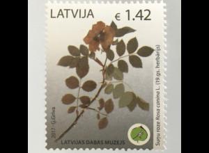 Lettland Latvia 2017 Nr. 1009 Naturkundemuseum Riga Hundsrose Flora Blumen