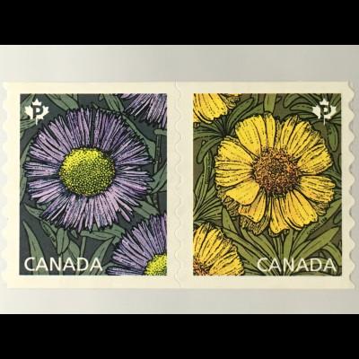 Kanada Canada 2017 Nr. 3467-68 Gänseblume Erigeron SpeciosusTetraneuris herbacea