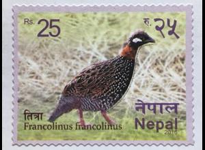 Nepal 2016 Neuheit Francolinus francolinus Fasan Vogelmotiv Fauna