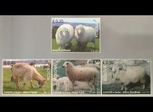 Kosovo 2017 Michel Nr. 372-75 Haustiere Fauna Schafe Bardhokschafe Rote Ziege