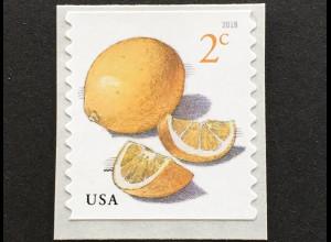 USA Amerika 2018 Nr. 5460 Freimarke Rolle Meyer-Zitrone (Citrus meyeri) Obst