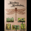 Belgien 2018 Neuheit Libellen Insekten Kleinlibelle Tiere Fauna Flügeltiere