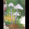 Niederlande 2018 Neuheit Die Natur erleben Pilze Mykologie Fliegenpilz