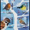 Schweden Sverige 2018 Neuheit Wintervögel Ornithologie Blaumeise Sperling Vogel