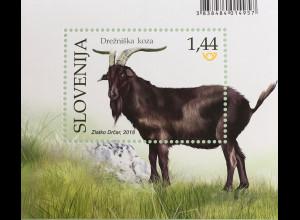 Slowenien Slovenia 2018 Neuheit Nutztiere Ziege Ziegenbock Fauna Farmtiere