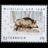 Österreich 2019 Neuheit Wildschwein Tiere Fauna echte Schweine Paarhufer