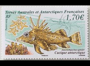 Franz. Antarktis TAAF 2019 Nr. 1035 Cacique Antarctique Fisch