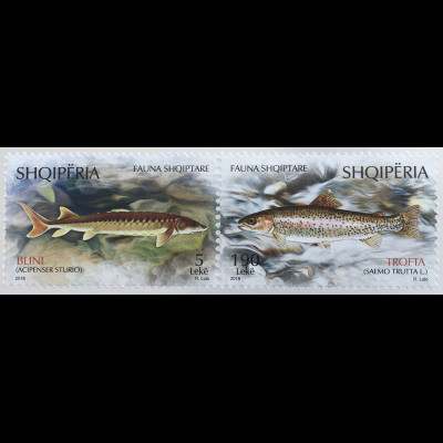 Albanien 2018 Neuheit Fische Fauna Stör und Lachs Flußbewohner