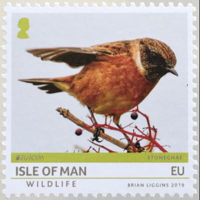 Insel Man 2019 Neuheit Europaausgabe Einheimische Vögel Wildlife Tiere Fauna