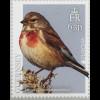 Guernsey 2019 Neuheit Europaausgabe Einheimische Vogelarten Fauna Ornithologie