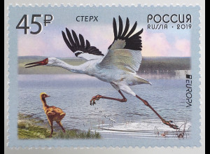 Russia Russland 2019 Neuheit Europaausgabe Einheimische Vogelarten Wasservögel