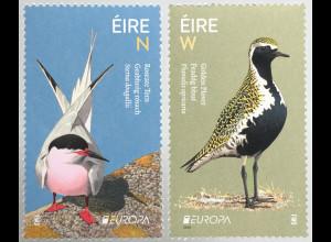 Irland 2019 Neuheit Europaausgabe Einheimische Vogelarten Fauna Ornithologie