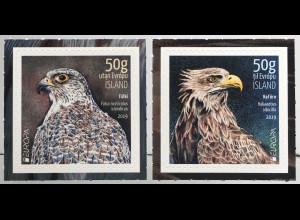 Island Iceland 2019 Neuheit Europaausgabe Einheimische Vogelarten