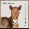 Island Iceland 2019 Nr. 1581-82 Farmtiere Fohlen und Hundebaby Fauna Bauernhof