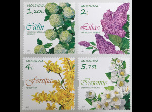 Moldawien Moldova 2019 Neuheit Blühende Sträucher Botanik Fauna Jasmin Flieder