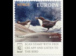 Norwegen 2019 Neuheit Europa Einheimische Vögel Fauna Ornithologie