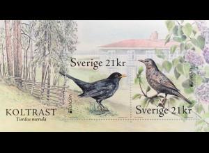 Schweden Sverige 2019 Block 59 Europaausgabe Einheimische Vogelarten Amsel