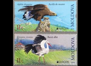 Moldawien Moldova 2019 Neuheit Einheimische Vogelarten Europaausgabe Storch