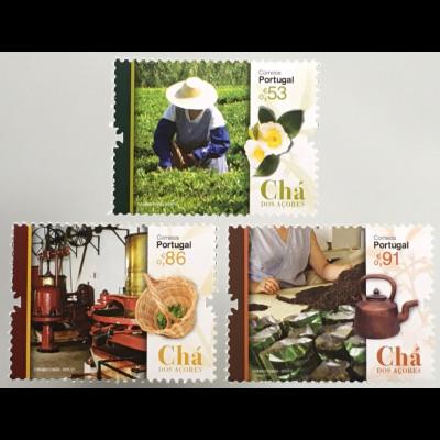 Azoren Acores 2019 Nr. 639-41 Teefabrik Chá Gorreana Teeanbau Teezeremonie