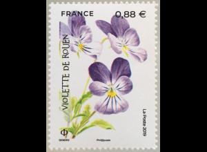 Frankreich France 2019 Nr. 7331 Veilchen Blumen Natur Flora