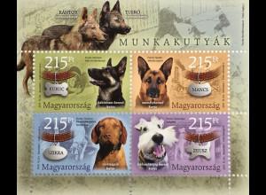 Ungarn Hungary 2019 Block 429 Spürhunde Tiere Arbeitshunde Fauna Terrier