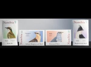 Namibia 2019 Neuheit Kuckucksvögel Fauna Tiere Vögel Ornithologie