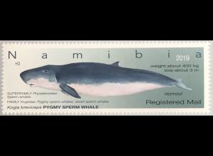 Namibia 2019 Neuheit Wale Neudruck Säugetiere Fauna Meeresbewohner