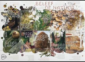Niederlande 2019 Nr. 3852-61 Natur erleben Bäume und Blätter Rotbuche Pappel