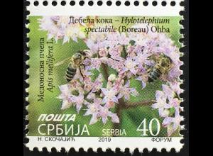 Serbien Serbia 2019 Michel Nr. 909 Freimarke Blumen