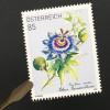 Österreich 2020 Nr 3510 Blaue Passionsblume Flora Natur Blume