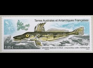 Franz. Antarktis TAAF 2020 Nr. 1061 Einheimische Fische Krokodileisfisch
