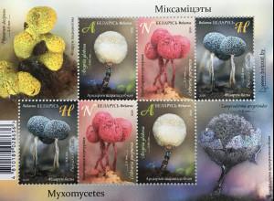 Weißrussland Belarus 2020 Block 185 Schleimpilze Taxon einzelliges Lebewesen