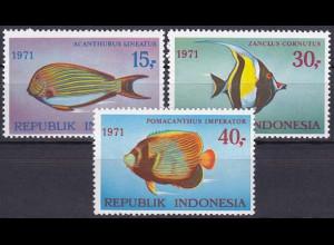 Indonesien 1971, Michel Nr. 698-700, Meeresfische (I) Kaiserfisch, Halterfisch