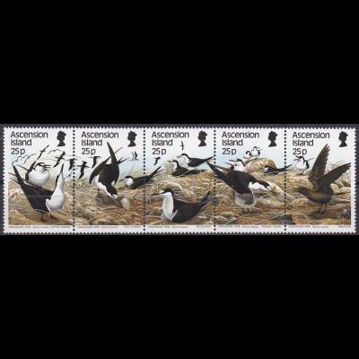 Rußseeschwalben Briefmarken Begrüßungsritual Ei wenden Brüten Küken Jungvogel