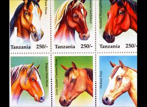 Pferde Briefmarken Araber Paint Horse Hackney Pony Belgisches Landpferd