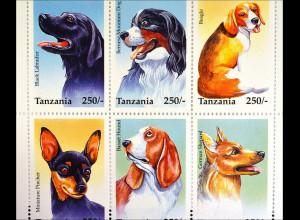Hunde beliebte Haustiere Labrador Berner Sennenhund Basset 1 Kleinbogen