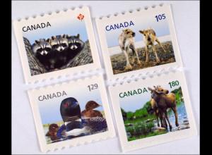 Kanada Canada 2012 Nr. 2791-94 Jungtiere Waschbär Ren Eistaucher Elch