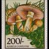 Pilze Mykologie Satz 8 Werte verschiedene Pilzarten Wiesenchampignon