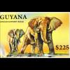 Rüsseltiere Afrikanischer Elefant Indischer Elefant Thailänd Elefant Safari