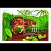 Einheimische Säugetiere Wildtiere Paka Paca Blockausgabe