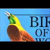 Vögel Veilchenohrkolibri Weißkopfseeadler Bald Eagle Gould's Violet-Ear